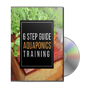 Get the Free training