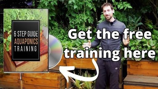 Aquaponics Training Course